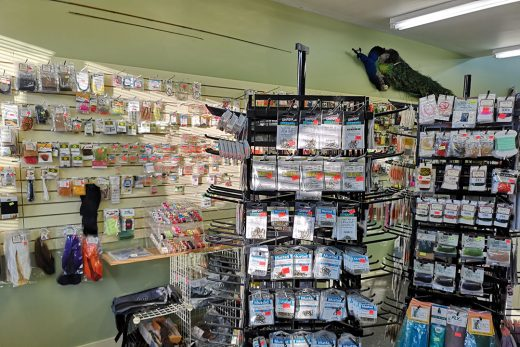 Castlegar Sports Centre and Fly Shop - 4