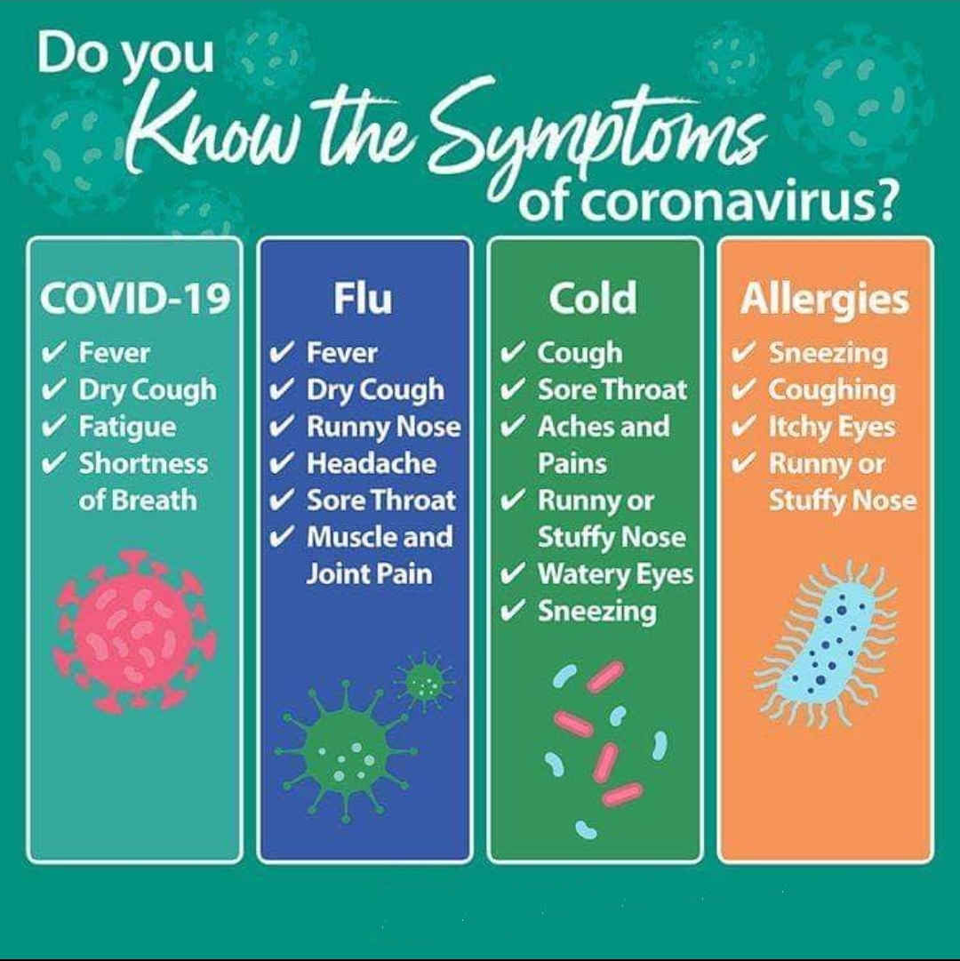Coronavirus Flu Cold or Allergy