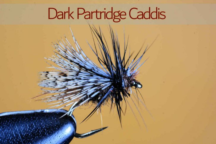 WSF Dark Partridge Caddis