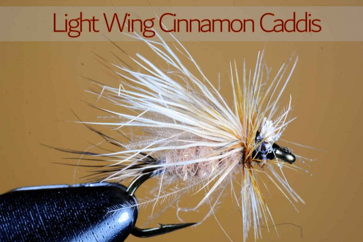 Light Wing Cinnamon Caddis