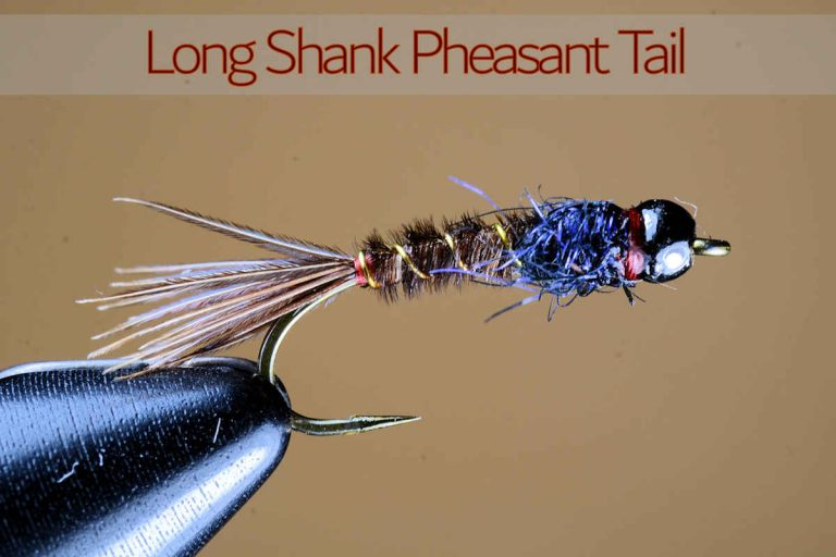 Long Shank Pheasant Tail