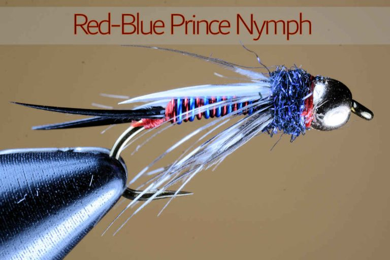 Red Blue Prince Nymph